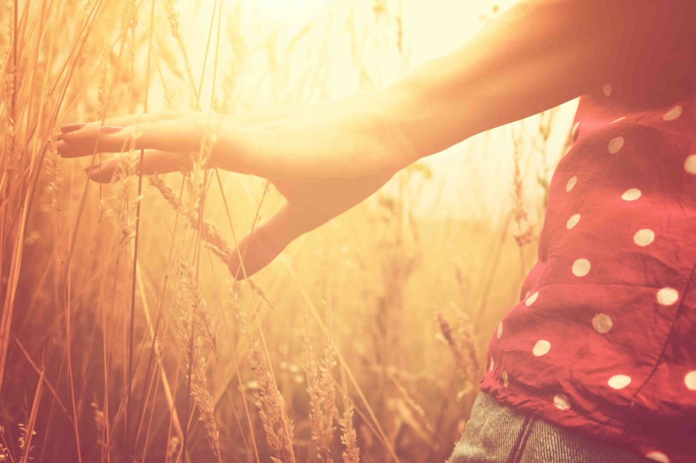 Girl in a wheat-field. Shallow depth of field on the hand.