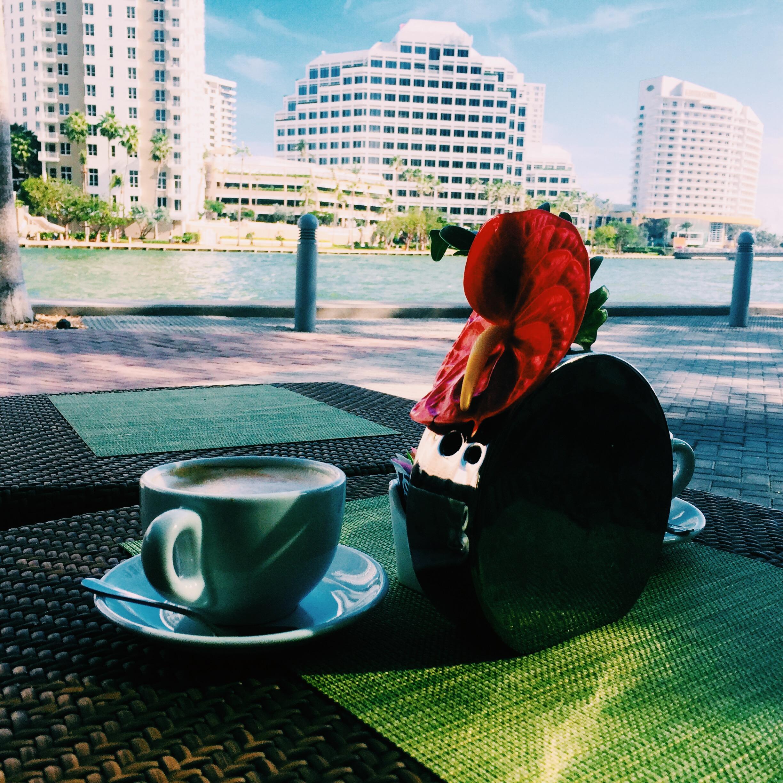 Cantina La Viente coffee by Miami River